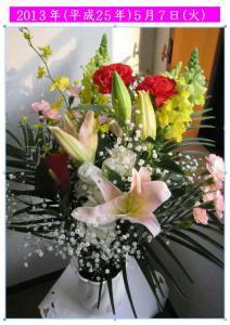 5.7の花