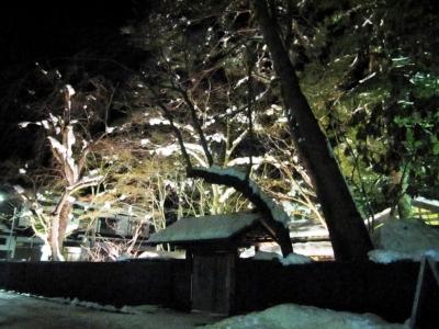 2014.1.21.夜の風景