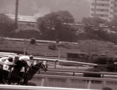 ダートレース3