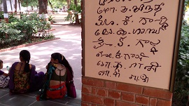 india_0106_270.jpg
