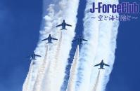 111126 岐阜航空祭 BI予行-28