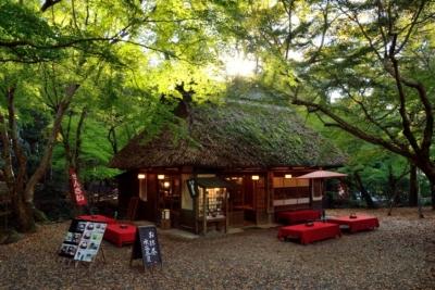 ⑧水谷茶屋