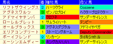 jin20111207_02.jpg