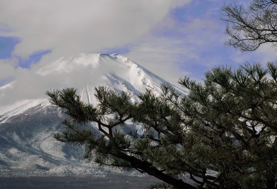 2013 12 23 松富士 -9℃ D2x (21)RS