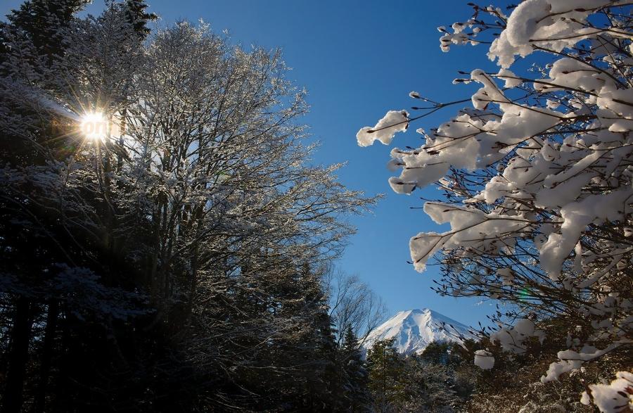 2013 12 30  忍野雪模様 D3x (79)R@SS
