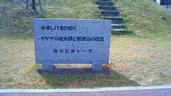 NEC_0480.jpg