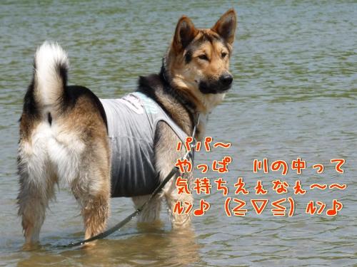 c_E3K.jpg