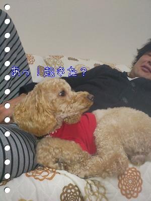 DSC_0848.jpg