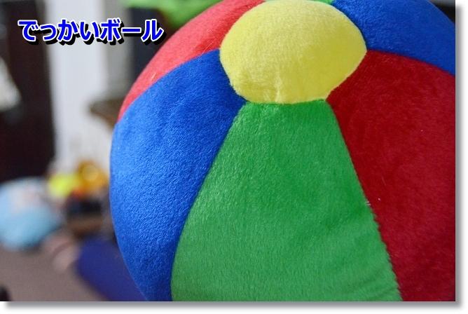 DSC_4853_20130119175354.jpg
