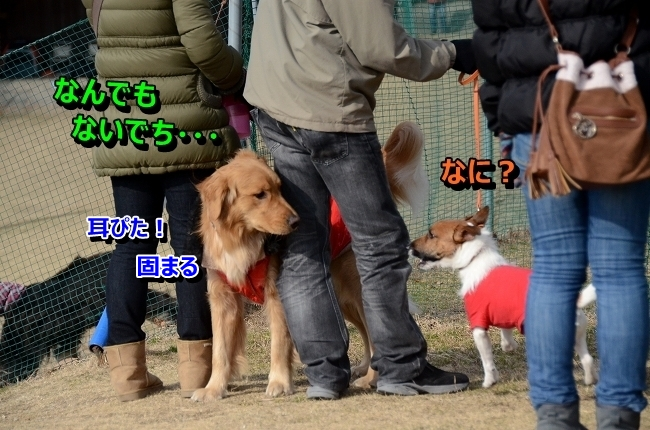 DSC_5181.jpg