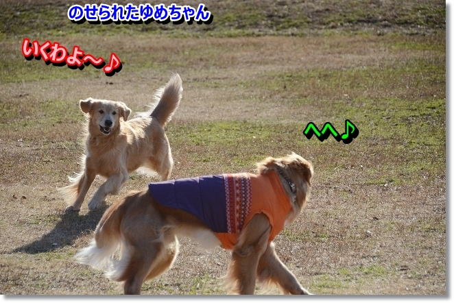 DSC_5613.jpg