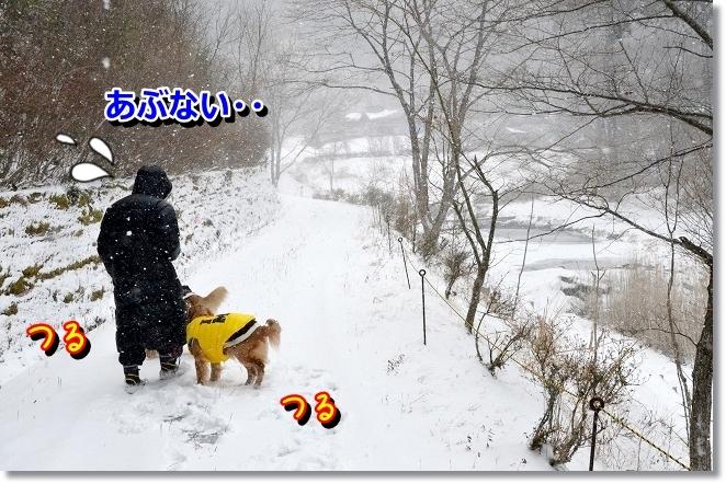 DSC_7824_20130218010726.jpg