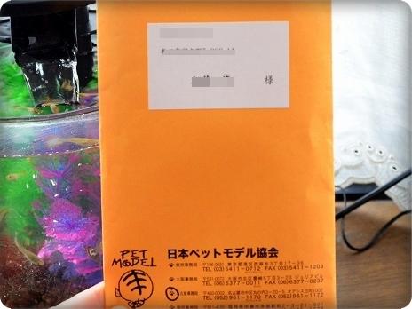 DSC_8344.jpg