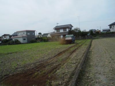 DSCF4233.jpg