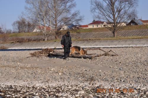 DSC_0400_ 樹理と父 河川敷散歩