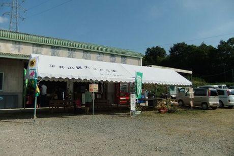 平井山観光農園