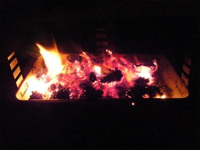 松ぼっくり焚き火