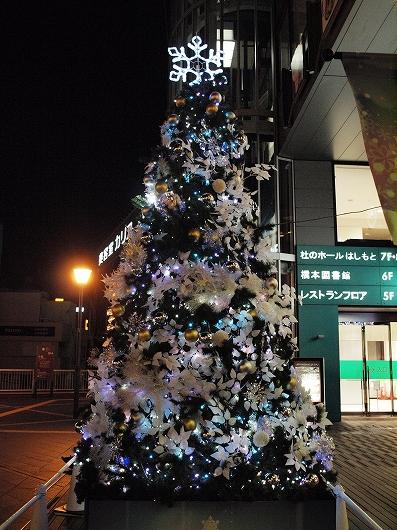 橋本のツリー20131206