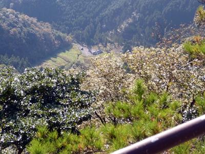 荒滝山城09