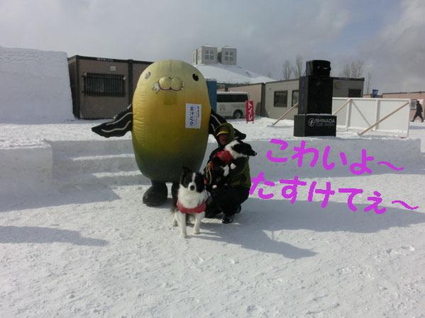 CIMG7459.jpg