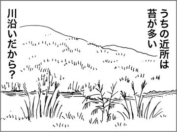kfc00140-4