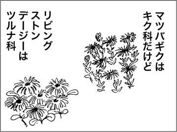 kfc00154-4