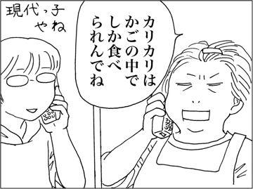 kfc00167-8