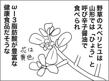 kfc140805