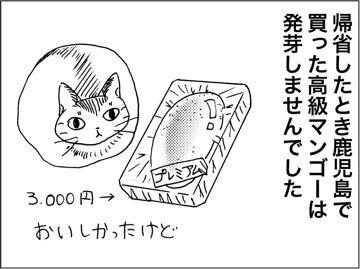 kfc180406