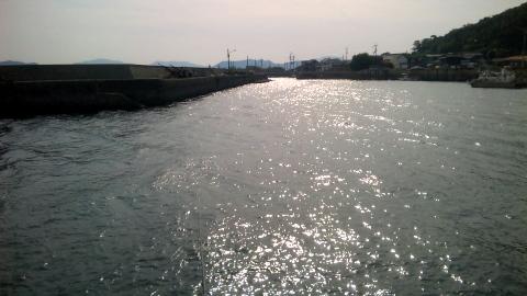 DVC00015_20101019174231.jpg