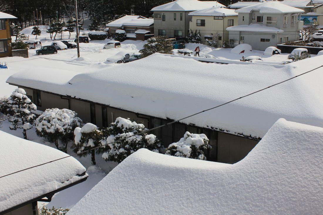 ●S電線あり12'2月1日目雪_08