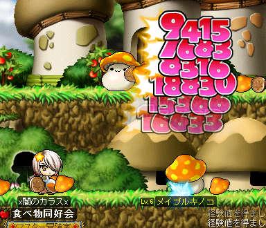 TTs_20110212003420.jpg
