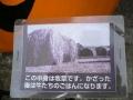 0130911萌木カポチャ2