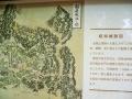 0131128岐阜城図