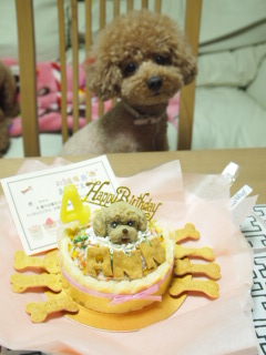 杏ちゃん4歳の誕生日。