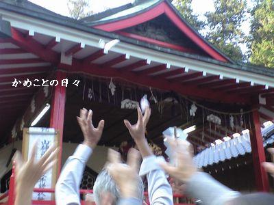 CA391779-mochi.jpg