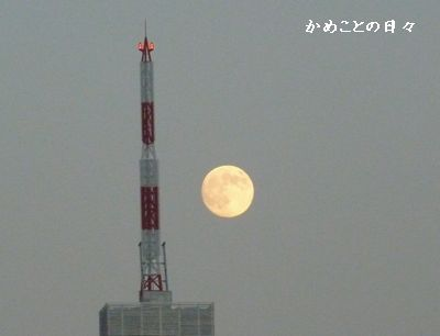 P1000001-moon.jpg