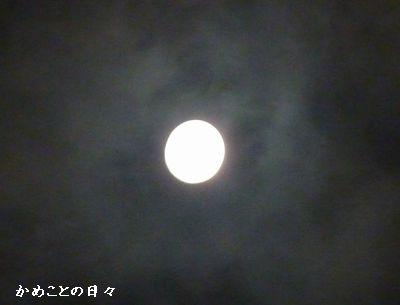 P1000018-moon.jpg