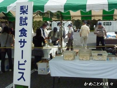 P1000950-nasi.jpg