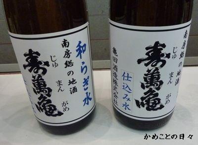 P1010499-kamemizu.jpg