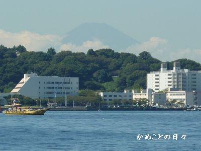 P1010712-fuji.jpg