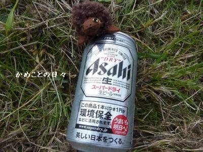 P1020360-beer.jpg