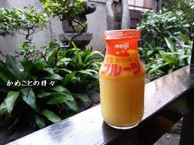 P1020427-fruits.jpg