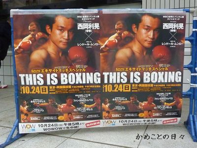 P1030059-boxing.jpg