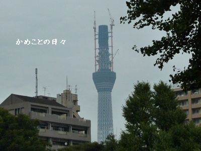 P1030086-sky.jpg