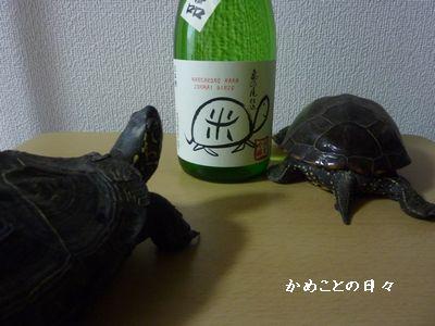 P1040530-sake.jpg