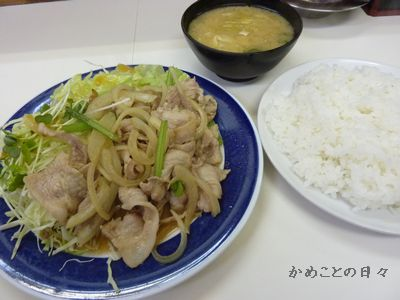 P1050049-teisyoku8.jpg
