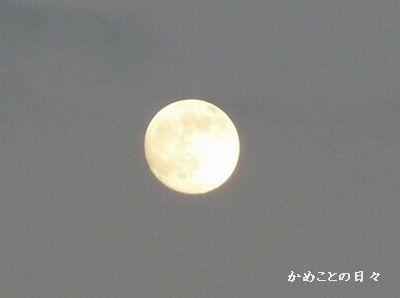 P1060639-moon.jpg