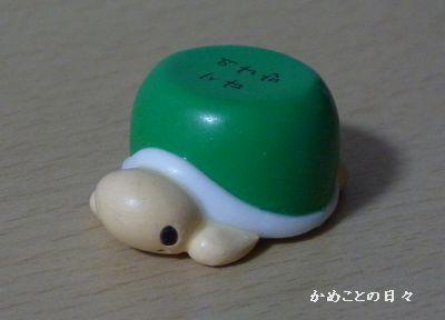 P1060851-kame.jpg