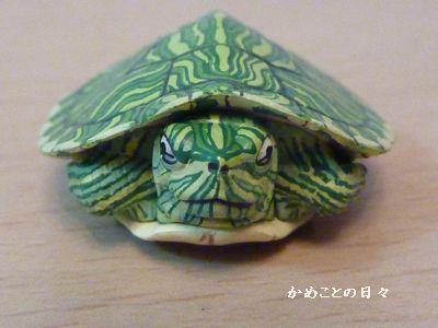 P1070144-midori2.jpg
